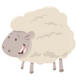 farm sheep animal vector image vector image