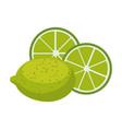 lemon acid fruit icon