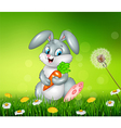 Little bunny holding carrot on grass background vector image vector image