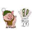 pig in winter clothes hat and scarf vector image vector image