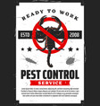 scorpion insects pet control extermination service vector image vector image