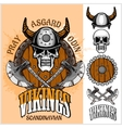 Viking emblem and logos plus isolated elements for vector image