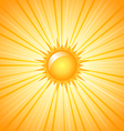 Big shining sun vector image vector image