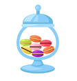 macarons in a glass jar vector image vector image