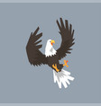 north american bald eagle flying and attacking vector image vector image