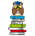 Owl with glasses and graduation cap vector image vector image