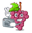 photographer red grapes fruit above mascot table vector image vector image