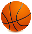 Basket ball vector image vector image