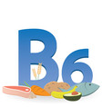 Foods rich in vitamin b6 vector image