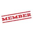 Member Watermark Stamp vector image