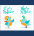 merry christmas birds titles vector image