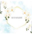 minimal flat style white phalaenopsis orchid vector image vector image