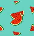 watermelon slice icon cut with seed triangle vector image vector image