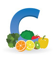 foods rich in vitamin c vector image vector image