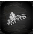 hand drawn pine leaf with acorn vector image