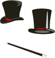 Magic hats and cane vector image