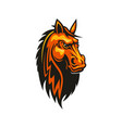 mustang horse head isolate equestrian sport mascot vector image