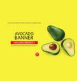 avocado banner realistic menu page vector image vector image