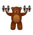 bear dumbbel