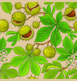 chestnut pattern on color background vector image