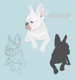 dog silhouette and hand drawn sketch of purebred vector image vector image