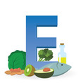 foods rich in vitamin e vector image vector image