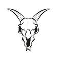 goat skull vector image