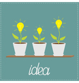 Lamp bulb plants in pots Wooden shelf Growing idea vector image