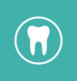 tooth flat icon with a circle on a green vector image vector image