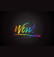 wow word text with handwritten rainbow vibrant vector image vector image