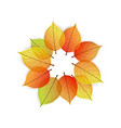 background with stylize autumn leaves vector image vector image