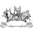cerberus hellhound design template with ribbon vector image vector image