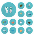 flat icons cocos sorbet sea star and other vector image vector image