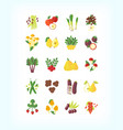 set of vegetarian organic food flat fruit vector image