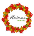 autumn falling colorful leaves in big circle vector image
