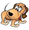 brown-orange dog vector image vector image