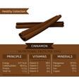 healthy collection cinnamon vector image vector image