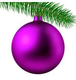 pink matte christmas ball or bauble and fir branch vector image vector image