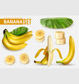 realistic banana transparent set vector image