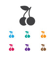 of fruits symbol on cherry vector image vector image