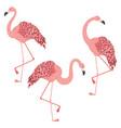 pink flamingo design vector image