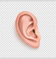 realistic human ear icon closeup isolated vector image vector image