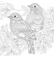 Sparrow birds vector image vector image