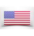 American national flag on a white background with vector image