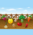 cartoon vegetables garden farm background vector image vector image