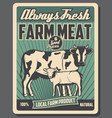 cattle farm meat market products vector image vector image