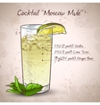 Cocktail Moscow mule vector image vector image