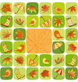 Colorful autumn leaves vector | Price: 1 Credit (USD $1)