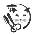 grooming cats and other animals vector image vector image