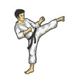 karate strikes foot up sketch engraving vector image